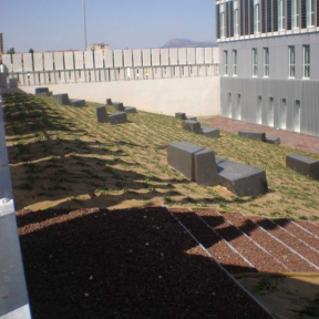 Arvena-jardineria-plantaciones