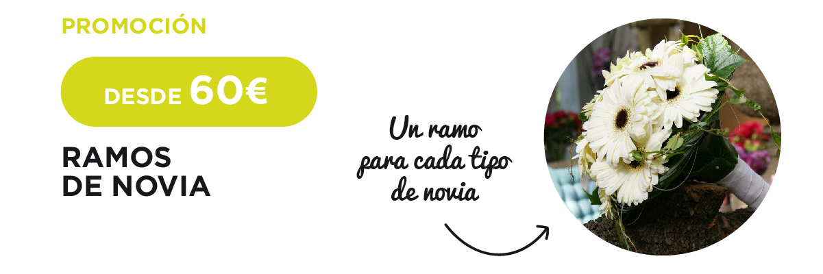 Arvena-Floristeria-Promocion-Ramos-Novia