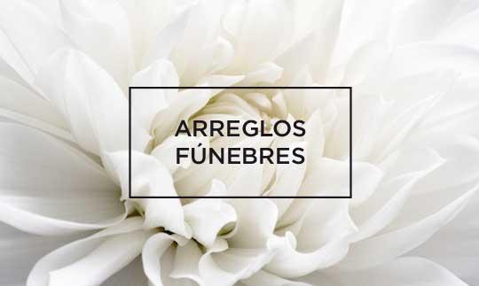 tienda-arvena-funebres